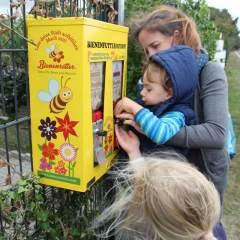 Bienenfutterautomat-d